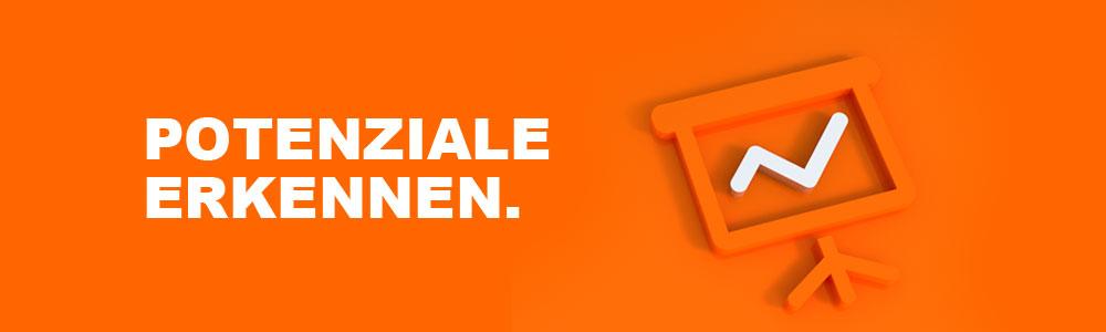 Skt-slide2